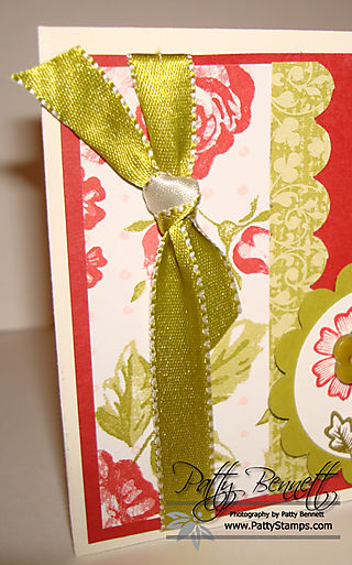 Kiwi ribbon close up