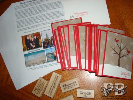 Christmas card letter 08