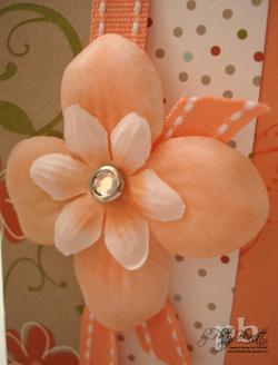 Dsc06398_guava_flower_closeup_cop_2